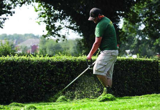 garden trimming service