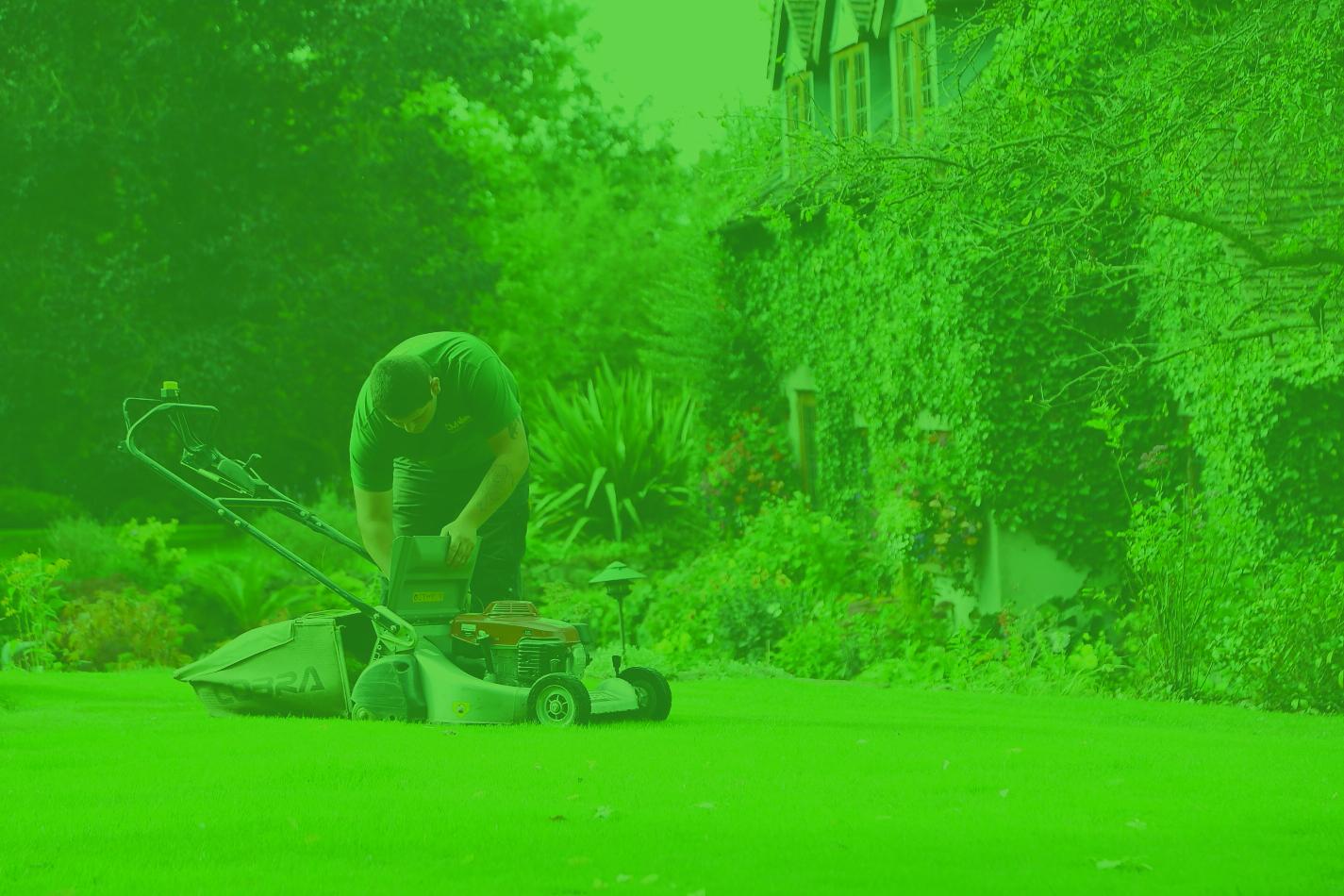 Local Grass Cutting & Maintenance